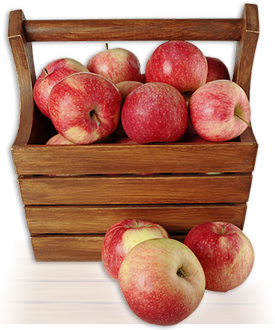 a picture of apples